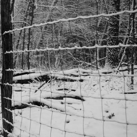 snow prison